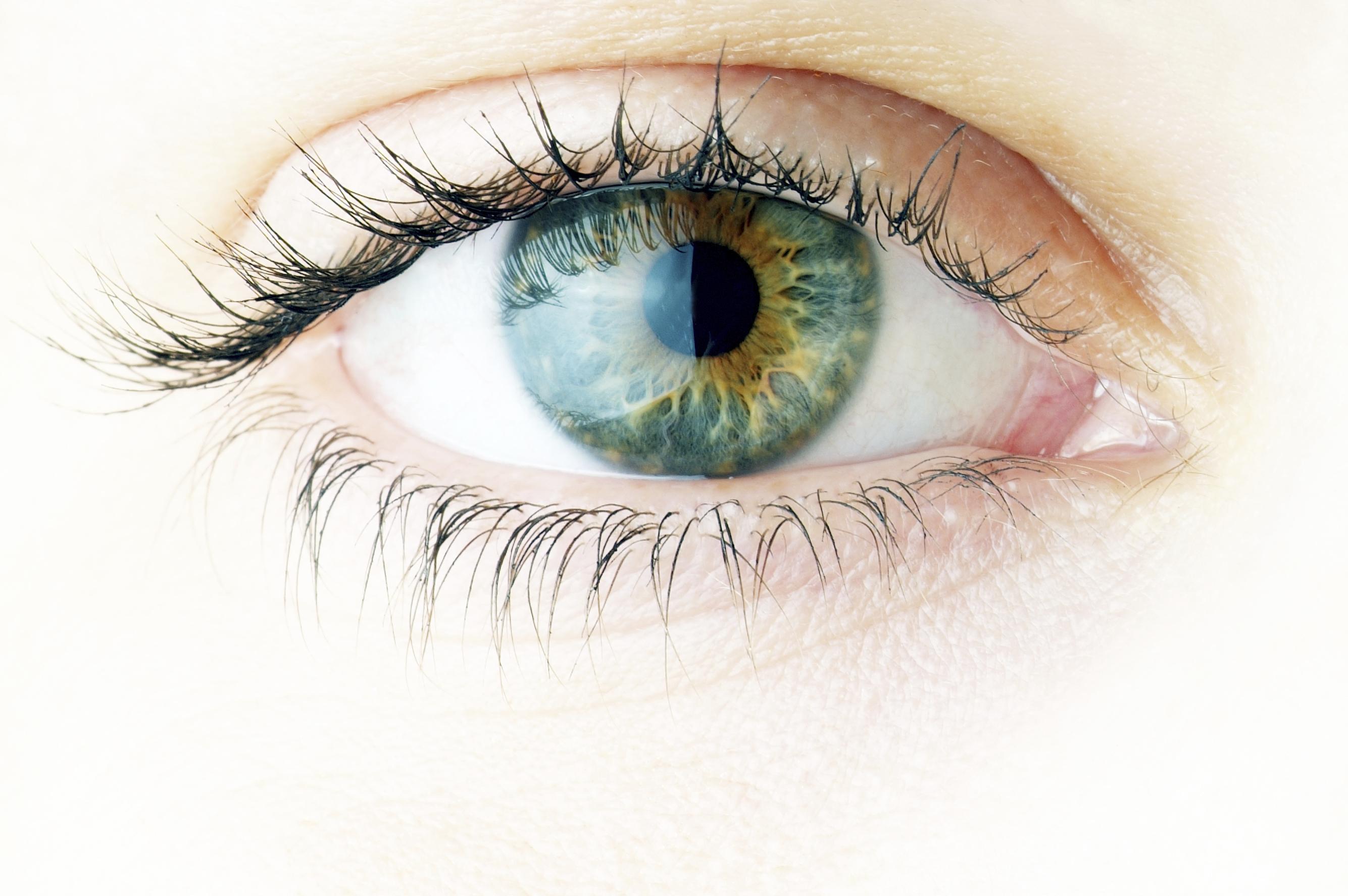 Здраве на очите